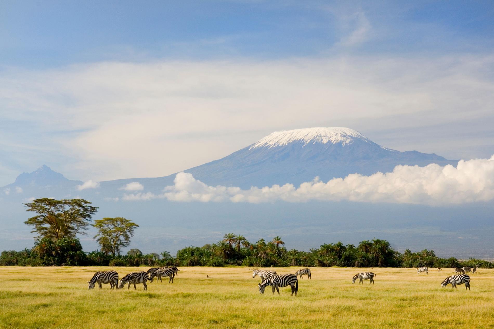kilimanjaroren irudi liluragarria.